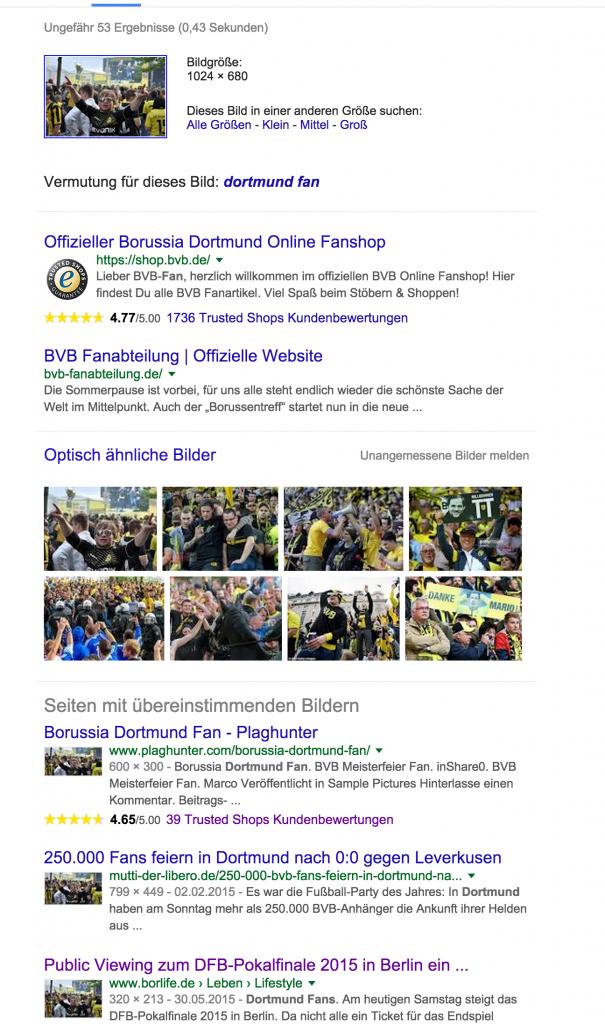 Beispiel 1: BVB Fan